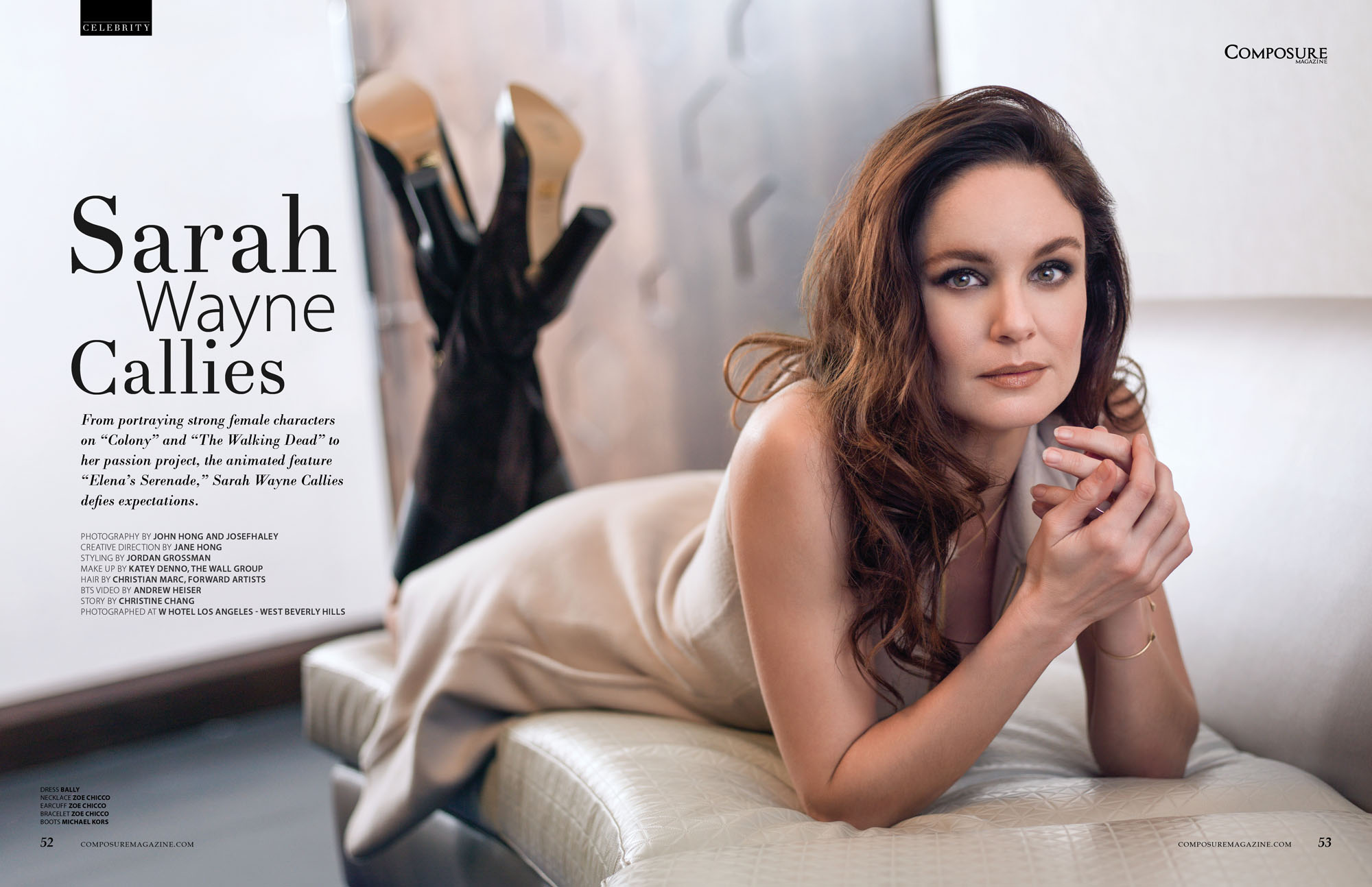 picture Sarah Wayne Callies